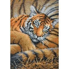 "Gold Collection Petite Cozy Cub Counted Cross Stitch Kit-5""X7"" 18 Count 