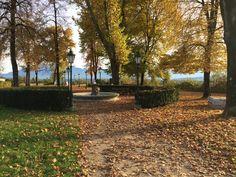 Bürgerlustpark Völkermarkt, autumn Sidewalk, Country Roads, Autumn, Fall Season, Side Walkway, Walkway, Fall, Walkways, Pavement