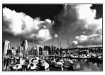 Pat Hornstein, Vancouver, Photography, Art, Canadian Artists, Doctor Vigari, Commercial Drive