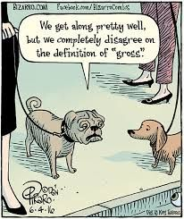 "Dan Piraro's ""Bizarro"" is an eccentric and bizarre look at everyday life through the cartoonist's eyes. Comics Kingdom, Comic Panels, Funny Cartoons, Funny Dogs, Dog Cat, Comedy, Pets, June, Dog Humor"