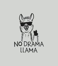 Save the drama for your lama! I love the drama lama Save the drama for your lama! I love the drama lama Alpacas, Illustrations, Funny Tshirts, Graphic Tees, Funny Quotes, Fat Quotes, Shirt Quotes, Shirt Sayings, Humor Quotes