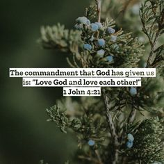 """1 John The commandment that God has given us is: """"Love God and love each other! Romans 13 10, Greatest Commandment, Jesus Today, 1 John 4, Asking For Forgiveness, Thank You God, Love Each Other, Love Others, God Jesus"""
