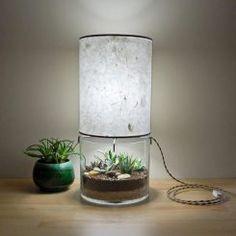 Incrível luminária de mesa com vaso de plantas na base