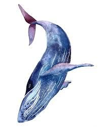 Image result for watercolor whales