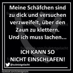 If you speak German . you will understand :) - Inquiry - Pinner - Coole Sprüche - Humor Love Calculator, Fail, Graham, German Quotes, Have A Laugh, True Words, Laugh Out Loud, Funny Jokes, Hilarious Quotes