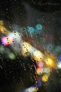 Rain and bokeh