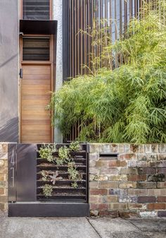A Sustainable Home Near Sydney Boasts Chicken Coops, Vertical Gardens, and More - Photo 1 of 9 - The gate leading to Geoff Carroll and Julie Young's rebuilt terrace house in an inner suburb of Sydney, Australia, holds an array of succulents, signaling what lies within: a greenery-filled home that includes a central courtyard, vertical gardens, aquaponics and rain filter systems, and even a chicken coop. Architect Clinton Cole of CplusC Architectural Workshop led a team of collaborators in…