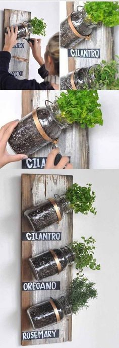:: Mason Jar Herb Garden Live in an apartment? You can have an herb garden, too. Use mason jars and a wooden board on a spare kitchen wall.Live in an apartment? You can have an herb garden, too. Use mason jars and a wooden board on a spare kitchen wall.