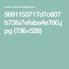 5691153717d7c607b73fa7efaba4e760.jpg (736×526)