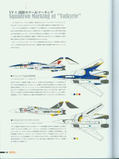 Variable Fighter Master File VF-1 Valkyrie Stratosphere Wings