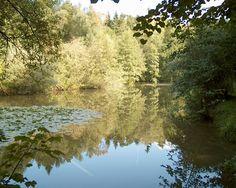 Steffetsmösli Seen, River, Outdoor, Interesting Facts, Switzerland, Outdoors, Outdoor Living, Garden, Rivers