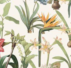 Soil&Co Fabric, Plants, Tejido, Tela, Cloths, Fabrics, Plant, Tejidos, Planets