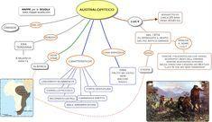Mappa concettuale su L'OMINIDE. LUCY, AUSTRALOPITECO... STAMPARE LA MAPPA: 1) Clicca sulla mappa (in modo che si ingrandisca); 2) cl...