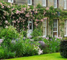 Portfolio - Arne Maynard Garden Design