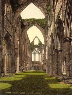 Tintern Abbey is one of the most beautiful and holy places that I have ever been.