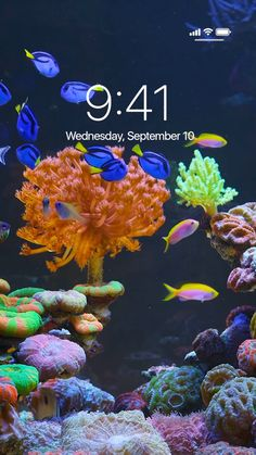Incredible Live Wallpapers for iPhone!