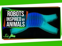 Robots Inspired By Animals - YouTube--- A little bit about Biomimicry.