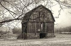 Old Barn, Rochester NY