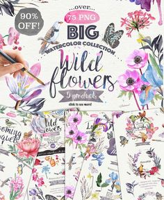 90% OFF SALE!  Wild flower pack 75 by Mikibith on @creativemarket