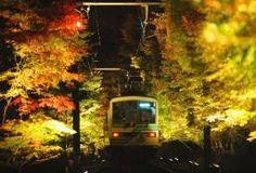 京都・鞍馬、深まる秋、車窓越しもみじのトンネル。Kyouto/Kurama, fukamaru aki, shasou goshi momiji no tonneru. Musim gugur yang semakin larut, terowongan momiji dari balik jendela kereta, di Kurama, Kyoto.