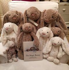 bunny love ... pwfhome.com