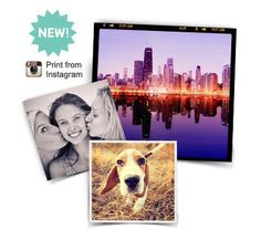 Square Prints | Walgreens ... print from Instagram Instagram Birthday Party, Square Photo Prints, Picture Frame Projects, Print Instagram Photos, Retail Humor, Instagram Square, Walmart Photos, Walgreens Photo, Square Photos