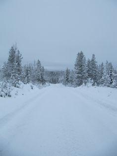 Kuusamon talvi