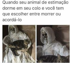 BEM EU!!  #filhode4patas #maedepet #maedegato #maedecachorro #paidecachorro #paidegato #gato #cachorro #petmeupet
