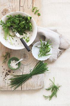 Fresh Herbs   egg & dart