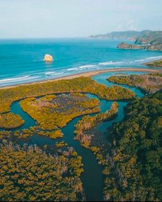 Santa Rosa National Park Guide: Where To Go & What To See Costa Rica Travel, Vacation Trips, National Parks, Source Of Inspiration, Where To Go, Santa, River, Outdoor, Pura Vida