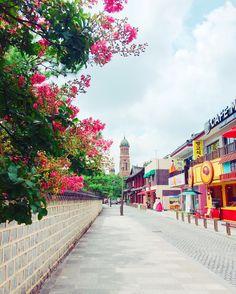 전주한옥마을의 아름다운 돌담길 :) (사진_인스타@hui_________________)