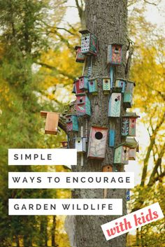 4 Simple Ways to Encourage Wildlife in Your Garden with Kids