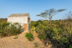 Beside Mexico's famous pipeline, just beyond the surf town of Puerto Escondido is 'Casa Tiny'. Designed by Aranza de Ariño, this idyllic concrete dwelling sits nestled amongst dense vegetation just a short stroll from the beach.