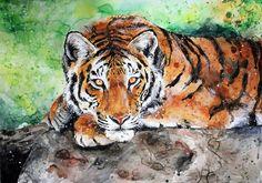tiger by ElenaShved.deviantart.com on @DeviantArt