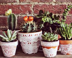 Darling!  I've been looking for something to do with my lace.  Why didn't I think how pretty cactus pots would be???