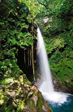 Costa Rica #travel #vacation #waterfall  http://www.vacationrentalpeople.com/vacation-rentals.aspx/World/Central-America/Costa-Rica/
