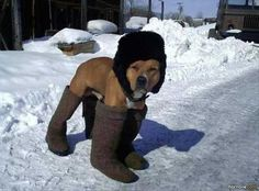 I told you it was cold.