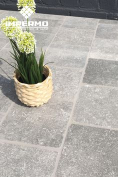 Tilestone Essentials Blue Stone Light A small beautiful gray imitation blue stone for the te Terrace Tiles, Terrace Floor, Patio Tiles, Making Water, Best Insulation, Healthy Environment, Backyard Projects, Unique Lighting, Small Trees