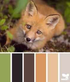 Fox palette | design seeds | Bloglovin'
