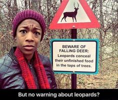 What about the leopards? Lol