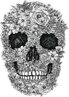Diccionario-de-simbolos-calavera-camaleon-cancer-capricornio-y-caracol-1.jpg (1260×1785)
