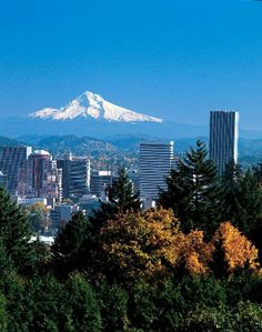 The state of Oregon... from beaches to desert and all else in between - in one state
