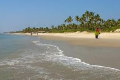 Goa Beach Guide: Which Beach is Best For You?: Benaulim