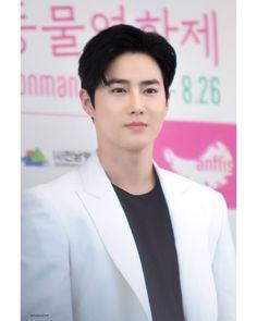 190822 Suho Animal Film Festival in Suncheonman Instagram King, Kim Junmyeon, I Want Him, Suho Exo, Dad Jokes, Nayeon, Comedians, Singing, Kpop