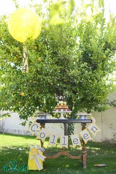Shutterfly Graduation Party for Colleen--Inspiration from the Smallest Things | TikkiDo.com