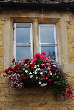 I still don't know how they keep these flower boxes so gorgeous.  Flowers just cascade all over the place!