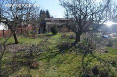 Ogród działkowy ROD Szafirek
