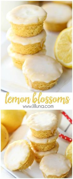 Lemon Blossoms Desserts Recipe via lil' luna - a delicious bite-size lemon treat with homemade glaze on top. SO addicting and yummy! The BEST Bite Size Dessert Recipes - Mini, Individual, Yummy Treats, Perfectly Pretty for Your Baby and Bridal Showers, Birthday Party Dessert Tables and Holiday Celebrations! Bite Sized Desserts, Bite Size Snacks, Bite Size Food, Individual Desserts, Lemon Dessert Recipes, Homemade Desserts, Cake Recipes, Desserts Nutella, Lemon Recipes