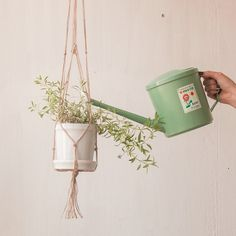 How to make a macame plant hanger for your home. A simple, easy but very fancy looking decor element to make your house feel like a home.