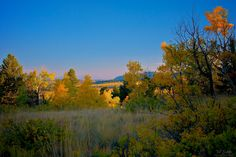 """https://flic.kr/p/8GLuU2 